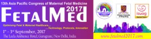 FetalMed2017, Related Event, INAC 2017, Lyon, France